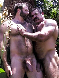 Gay Bears Porn